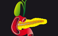 homöopathie darmpilz
